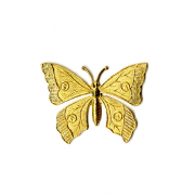 Lg Butterfly, Raw Brass, PK/1